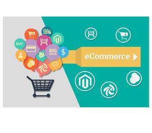 Ecommerce website development company india Ahmedabad