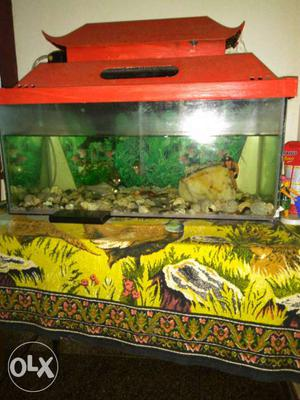 Fish tank only n top urjent
