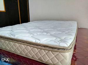 Queen size pocket spring bed with 5 years