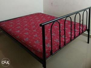 2 years old Queen size Iron Cot and Kurl-on Matress