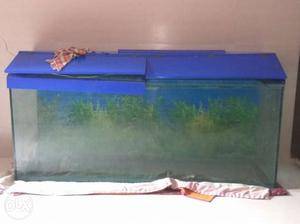 5.5 foot fish tank selling in very cheap rate