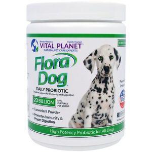 Flora Dog 20 Billion Daily Probiotic, 3.92 oz (111 g) -