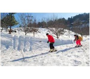 manali tour package for couple family holidays in himachal
