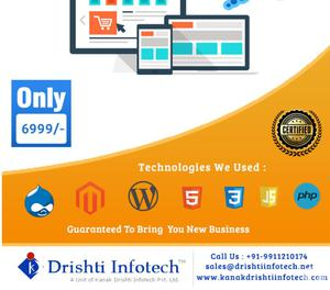 Looking for Effective Web Design Services Delhi