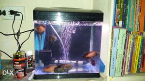 Iported fish tank for sale include heater,filter,bubble