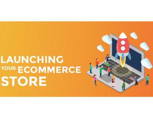 Customized ecommerce website design at affordable price