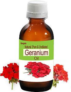 Geranium Oil - Natural, Pure & Undiluted - 100 ml