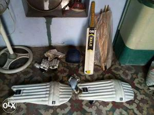 White And Brown Cricket Bat And Pair Of White Shinpads