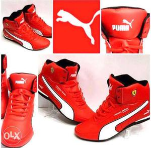 All branded line of shoes available at affordable