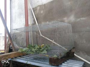 Cage for sale of Pet's