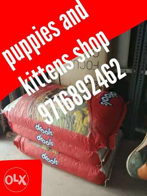 All brands of Dogs food and Dogs accessories..