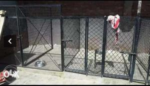 Big dog kennel cages set of 7 at very low price