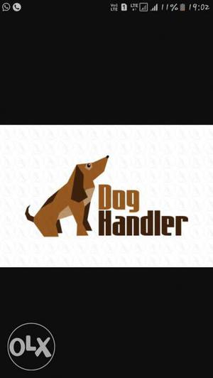 Dog trainer and dog handler available for all age