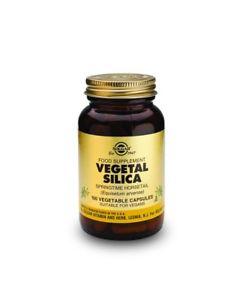 Solgar Full Potency Vegetal Silica Vegetable Capsules, 100