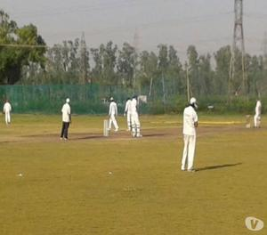 Best Cricket academy in delhi New Delhi