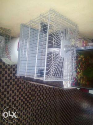 Gray Steel Birdcage
