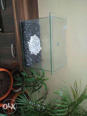 Premium Aquarium with Glass Cover (1.8ft * 1.2ft