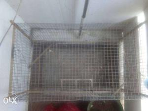 Strong steel cage for small birds and animals