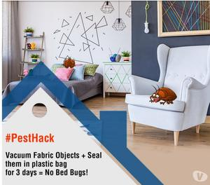 Bed Bugs Treatment Services, Bed Bug Pest Control Bangalore