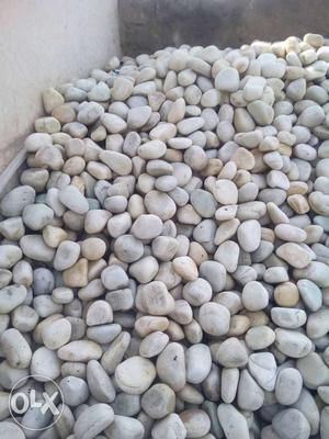 Gray Pebbles rate 20 rupes per piece
