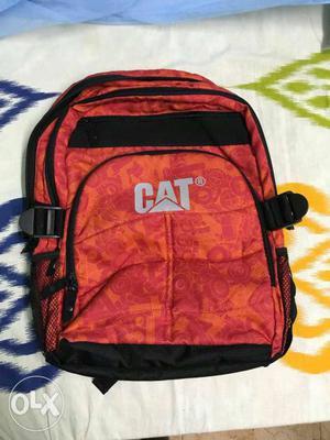New bag cat original imported 1 pics  contact no