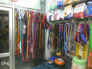 Dog accessories available at pet planet 266 green