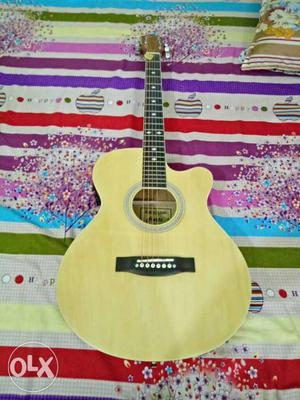 Hertz Guitar Hza  electro acoustic Guitar