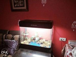 Original sobo aquarium with tube light installed