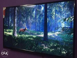 Sony and samsung panel led tv bulk and wholesale at lower