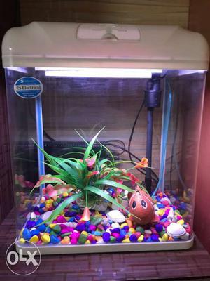 Full set fish tank