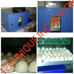 High Technology egg incubator (Technique incubator)