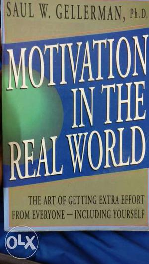 Motivation in the real world Excellent book, by