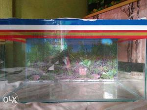 New 2ft by 1ft by 1ft height aquarium for sell