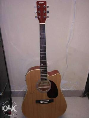 Hertz Semi Electric Guitar With Digital Tunner and equilizer