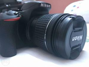 Nikon-d-with-kit-lens mm, 4 month old in