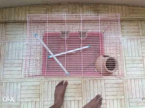 Bird cage for sale in karungalpalayam
