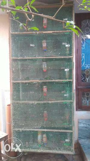 Six rack double door wooden cage for sale in
