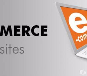 Best E- Commerce Web Development Services in noida Noida