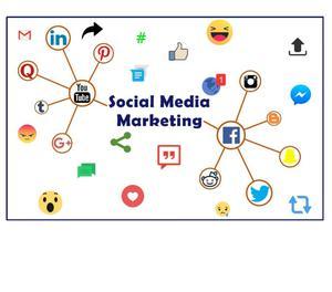 Internet Marketing Company In India Delhi
