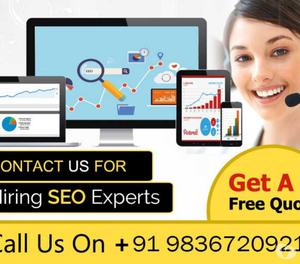 Hire Dedicated SEO Expert in India- TS Web Technologies