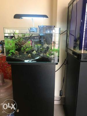 Fish tank new piece will be given. Call for
