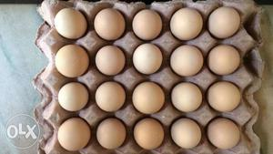 Eggs of black hens for sale