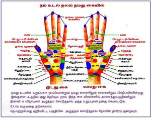 Tamil AcuPuncture Books for Sale in Half Rate