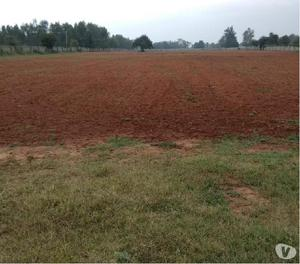 site for sale in Whitefield near global school main road