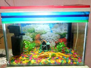 L*b*h= new aquarium with all accessories