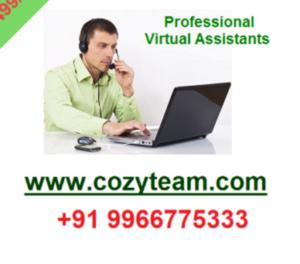 COZYTEAM Will Do Data Entry Work For 3 Hours – Delivery 24