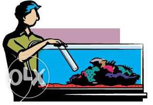 Fish tank cleaning services at your door step