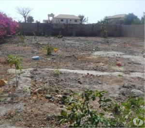 800 sq Meter Plot A block sector 63 Noida