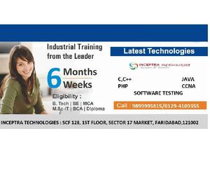 6 WeeksMonths training from Industrial Experts