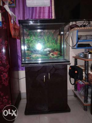 Sunsun fish tank 4 months old ready for sale